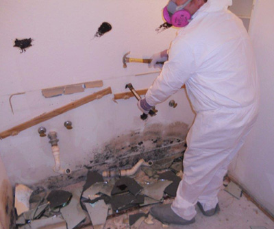 Naples Mold Remediation Specialist
