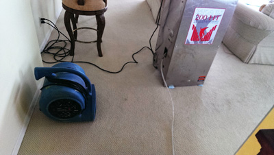 Industrial dehumidifiers for flood water damage